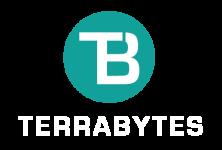 201902 - TERRABYTES logo GreenWhite
